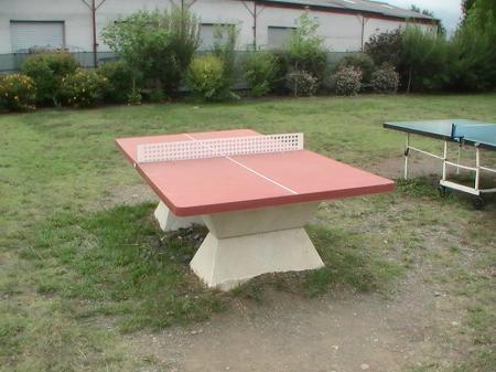 Le parcourt d 39 une passion tennis de table savoir faire for Tennis de table exterieur